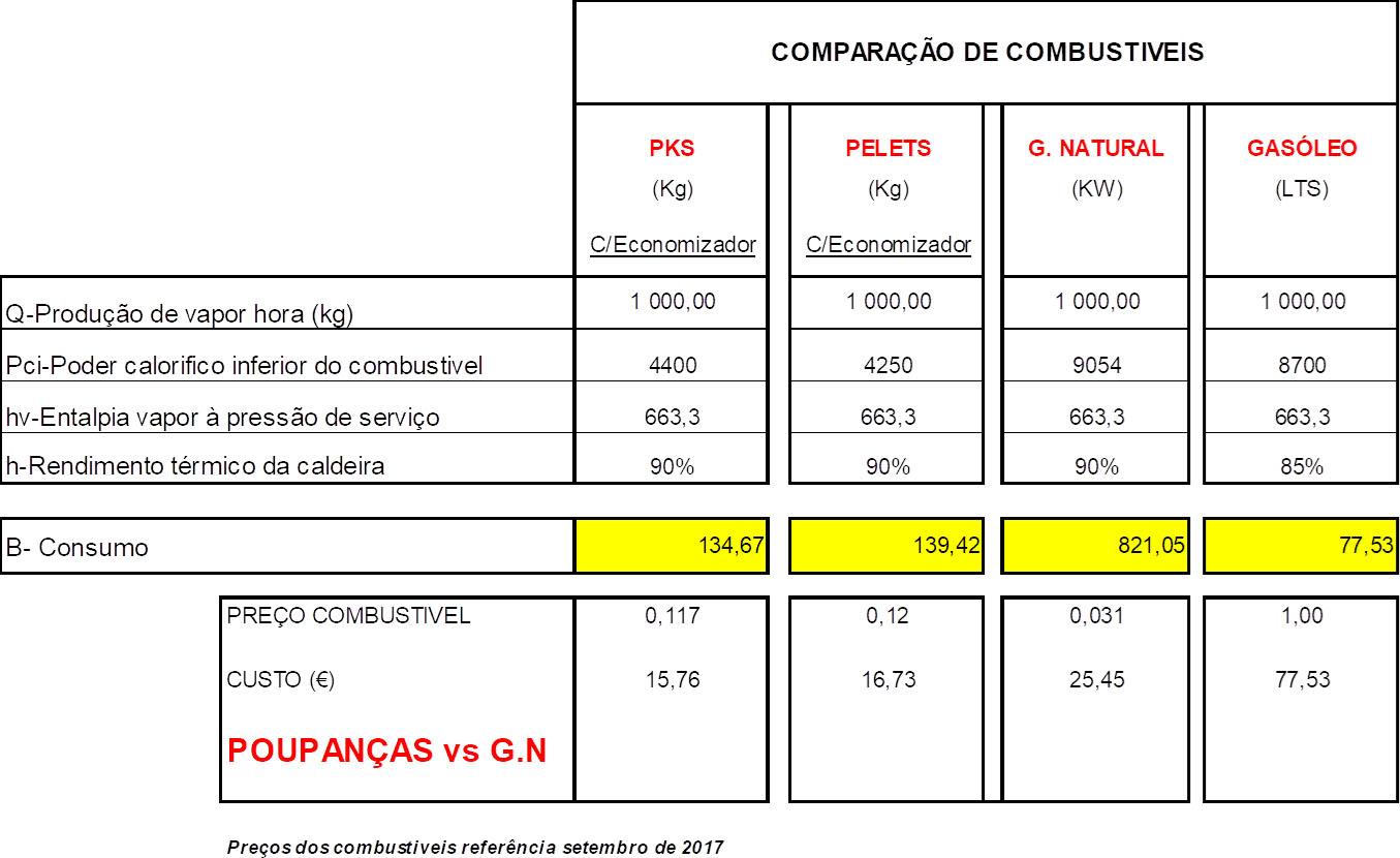 Custos Produção (1 ton Vapor)